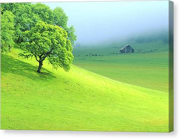 Foggy Morning In The Valley Canvas Print by Eggers Photography