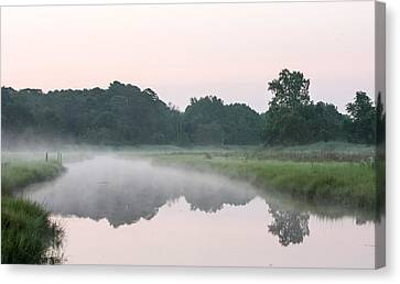 Foggy Morning Reflections Canvas Print by Allan Levin