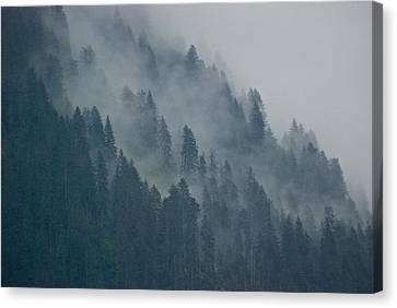Foggy Mountain Ridge Canvas Print by Eric Tressler