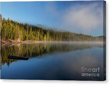 Foggy Sunrise At Elk Lake - Oregon Canvas Print