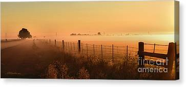 Foggy Sunrise On Hawkins Rd Canvas Print