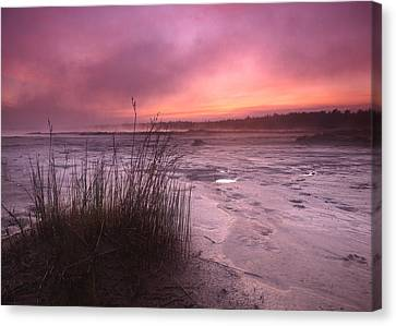 Foggy Sunset At Singing Sands Canvas Print by Cale Best