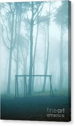 Foggy Swing Canvas Print by Carlos Caetano