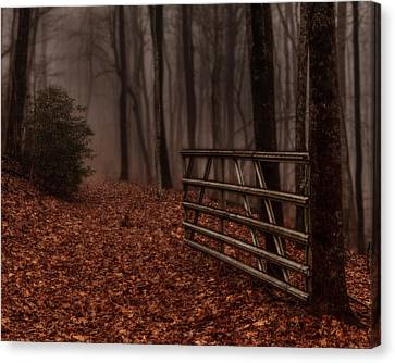Foggy Trail Canvas Print