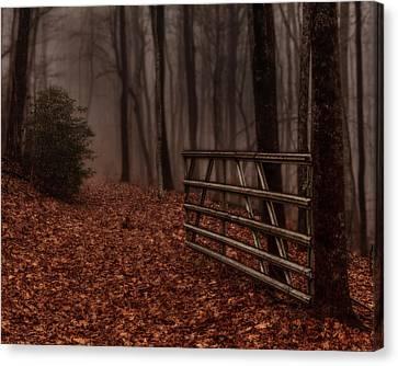 Foggy Trail Canvas Print