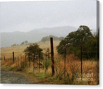 Foggy Wet Morning Canvas Print by Robert Ball