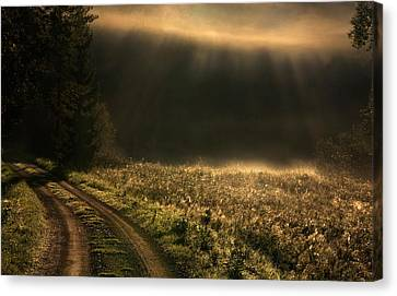 Fogy Morning Canvas Print