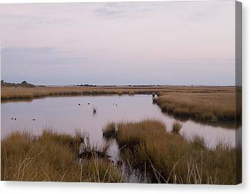 Folgers Marsh Nantucket Canvas Print by Henry Krauzyk