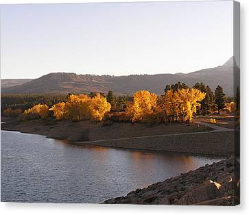 Foliage At Jackson Lake Canvas Print