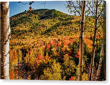 Foliage View From Crawford Notch Road Canvas Print by Jeff Folger