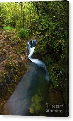 Canvas Print featuring the photograph Follow It I by Yuri Santin