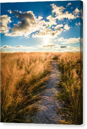 Follow The Light Canvas Print by Clay Townsend