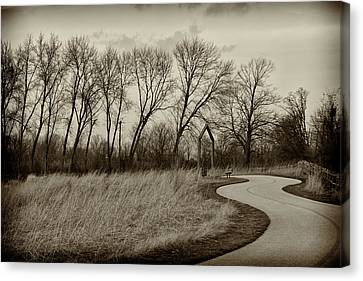 Canvas Print featuring the photograph Follow The Path by Elvira Butler