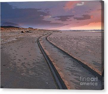 Follow The Sandy Road Canvas Print by Carol Grimes