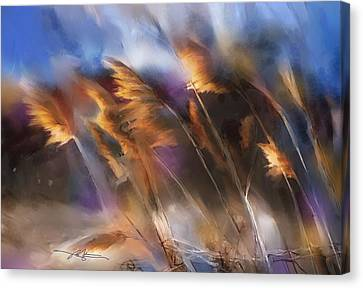 Follow The Sun Canvas Print by Bob Salo