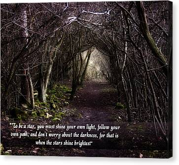 Follow Your Own Path Canvas Print by Vicki Field