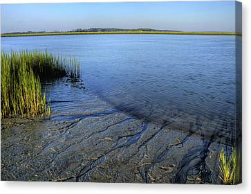 Folly Beach Marsh  Canvas Print by Dustin K Ryan