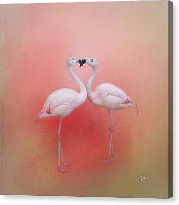 Fond Flamingos Canvas Print
