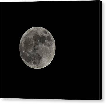 Fool Moon Canvas Print by Joshua Massenburg