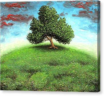 Fool On The Hill Canvas Print by Cristophers Dream Artistry