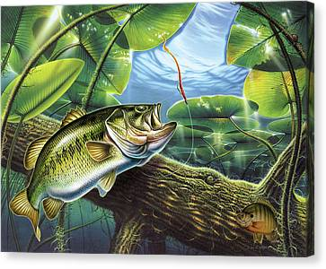 Fooled Again Bass II Canvas Print by JQ Licensing