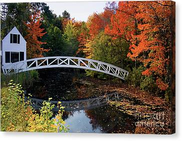 Foot Bridge Over A Pond Canvas Print by George Oze