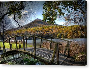 Otter Canvas Print - Foot Bridge by Todd Hostetter
