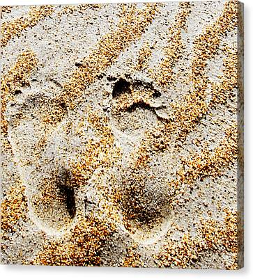 Foot Prints  -  Part 2 Of 3 Canvas Print by Sean Davey