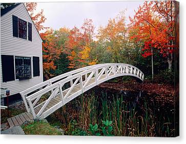 Footbridge And Foliage Canvas Print by George Oze