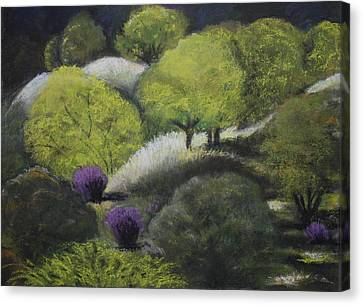 Foothill Spring Canvas Print