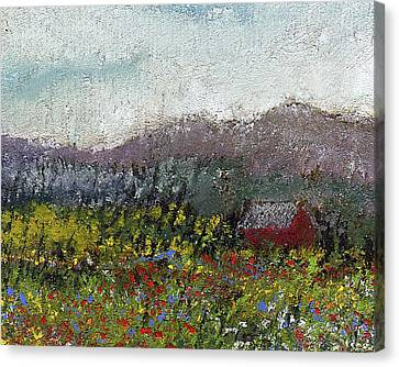 Foothills Meadow Canvas Print by David Patterson