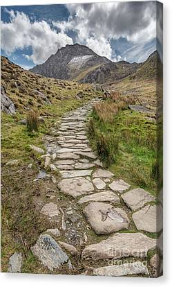 Footpath To Tryfan Canvas Print by Adrian Evans