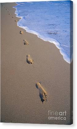 Footprints Canvas Print by Don King - Printscapes