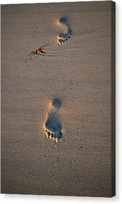 Footprints In Sand Canvas Print by See My Photos