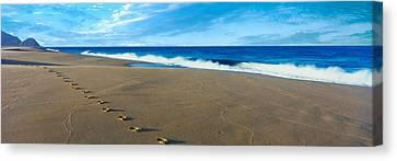 Footprints On The Beach, Playa La Canvas Print by Panoramic Images