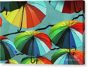 For A Rainey Day Canvas Print by Bob Phillips