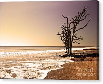 Canvas Print featuring the photograph For Just One Day by Dana DiPasquale