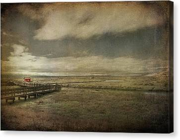 For The Lonely Souls Canvas Print by Laurie Search