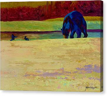 Foraging At Neets Bay - Black Bear Canvas Print by Marion Rose