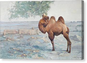 Camel Canvas Print - Foraging by Chen Baoyi