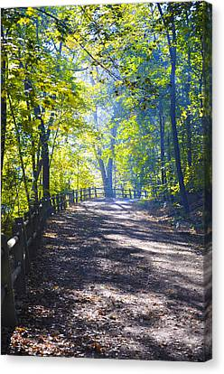 Forbidden Drive - Philadelphia Canvas Print
