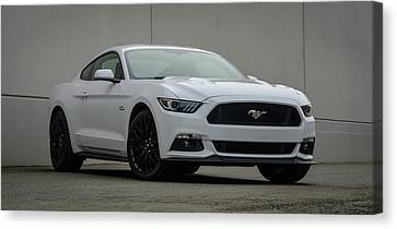 Ford Mustang Canvas Print by Andy Shapiro