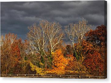 Foreboding  Skies Canvas Print by Jessica Jenney