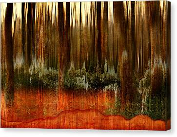Forest Abstract Canvas Print by Heike Hultsch