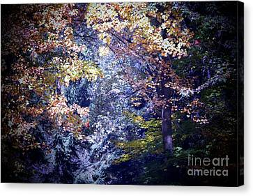 Forest Abstract Canvas Print by Marjorie Imbeau