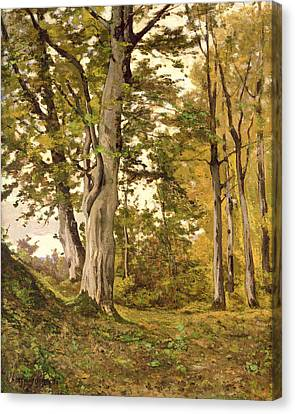 Forest At Fontainebleau Canvas Print by Henri-Joseph Harpignies