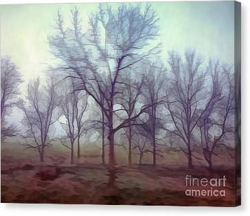 Canvas Print featuring the photograph Forest Ballet by Kerri Farley