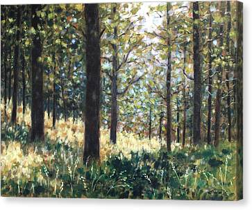 Giclee Trees Canvas Print - Forest- County Wicklow - Ireland by John  Nolan