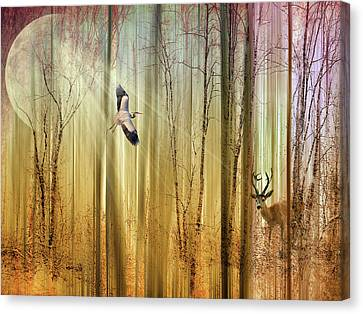Forest Fantasy  Canvas Print by Jessica Jenney