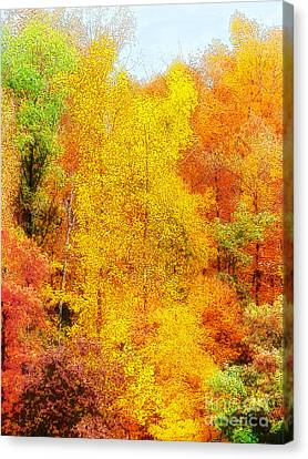 Forest Fire Canvas Print by Craig Walters